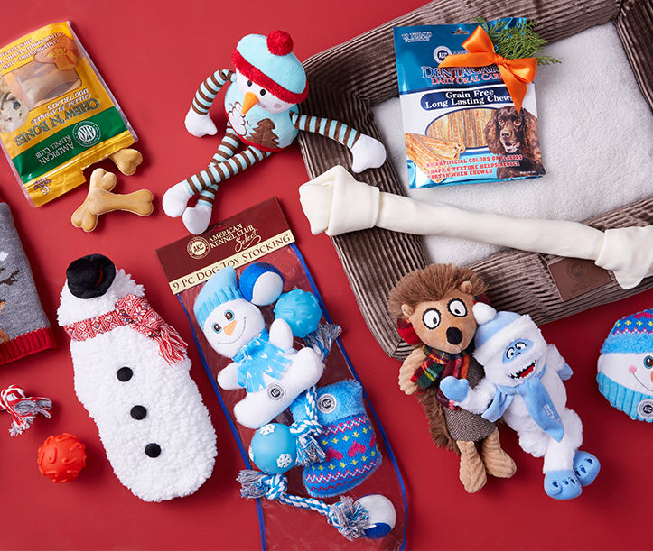 Holiday toys and treats for pets