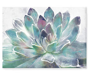 Succulent Hand Embellished Canvas Wall D 233 Cor Big Lots