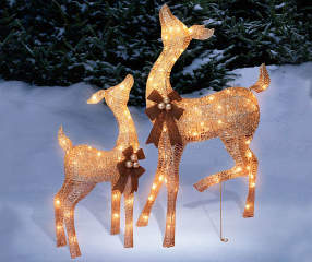 Light Up Outdoor Christmas Deer Set 2 Piece Champagne