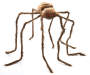 50 inch Brown Poseable Hairy Spider Silo Image