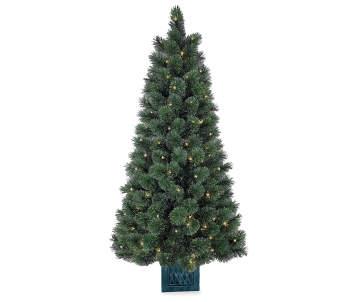 4800 - Big Lots Christmas Trees