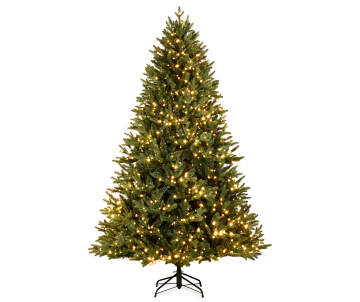 8 functions - Outdoor Christmas Trees