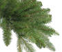 7.5 Foot Sun Valley Fresh Cut Pre Lit Artificial Christmas Tree Close Up Detail Silo Image