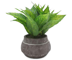 Artificial House Plant In Round Clay Pot Big Lots