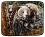 Bear Throw Blanket Overhead View Silo Image