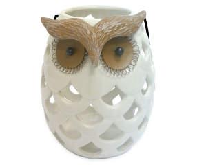 Wilson Amp Fisher Ceramic Owl Lantern Big Lots