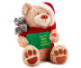 Christmas Story Telling Animated Bear and Mouse with Book Angled View Silo Image