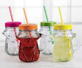 fox mason jars with lids straws 4 pack big lots. Black Bedroom Furniture Sets. Home Design Ideas