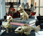 Halloween Animated Kitten Skeleton Lifestyle Image with Other Mini Boneyard Products