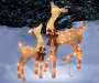 Light-Up Champagne Deer Set 2-Piece Outdoors In Snow Image