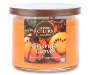 Orange Clove 3 Wick Candle in a Metal Lid Silo Image