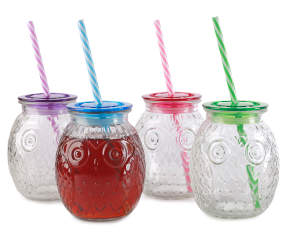 owl mason jars with lids straws 4 pack big lots. Black Bedroom Furniture Sets. Home Design Ideas