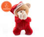Praying Santa Bear with Folding Hands Front View Silo Image
