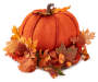 Pumpkin Center Piece Silo Image