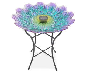 Wilson Amp Fisher Purple Amp Blue Flower Glass Solar Birdbath