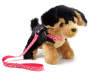 Rottweiler Pet Plush Doll Dog with Leash Angled View Silo Image