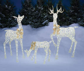 Winter Wonder Lane White Light Up Led Deer Family 3 Piece