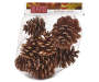 Scented Holiday Pinecones In Package Silo Image