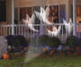 Whirl A Motion White Ghosts LED Light Show Projector on House