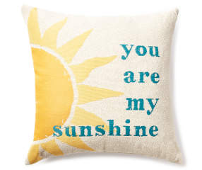 Quot You Are My Sunshine Quot Throw Pillow 20 Quot Big Lots