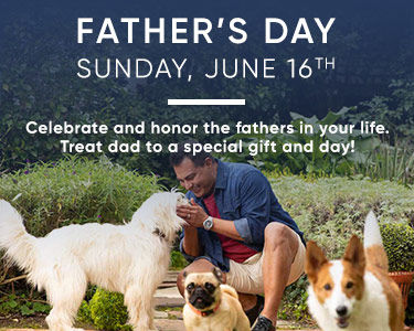 Father's Day is June 16th. Shop in-store and online for gifts.