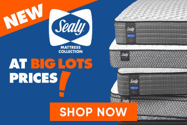 New Sealy Mattress Collection at Big Lots Price! Shop Now