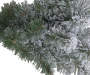 6 feet Vail Flocked Pre Lit Artificial Christmas Tree with Clear LED Lights silo front