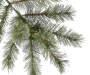 6 foot Jackson Pre Lit Cashmere Artificial Christmas Tree with Clear Lights silo front branch close up