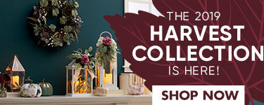 The Harvest Collection is Here. Shop Fall Decor.