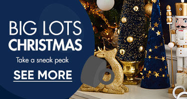 Big Lots Christmas. Take a sneak peak. Shop Now.
