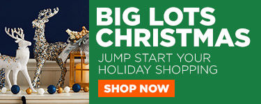 Big Lots Christmas. Jump start your holiday shopping. Shop Now.