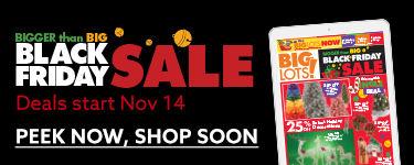 Bigger than big Black Friday Sale Sneak Peek.