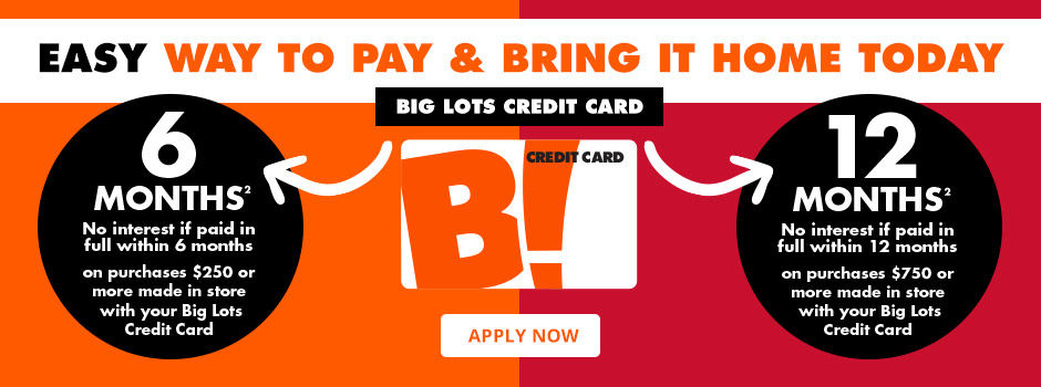 The Big Lots Credit Card is an easy way to pay and take home today! Keep reading for details.