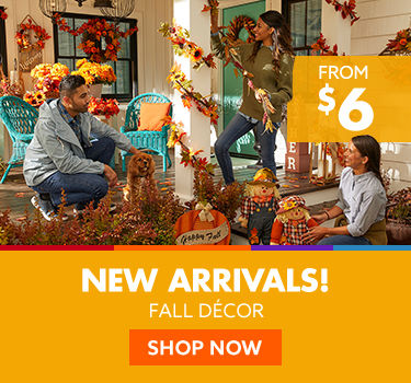 New arrivals fall decor from 6 dollars.