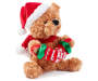 Animated and Sound Accordion Christmas Bear silo front