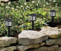 Black Lantern Solar Pathway Lights 10 Pack lifestyle