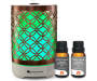 Deals on Gurunanda Bronze Elegance Diffuser & Oil Kit