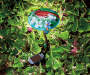 Cardinal Stained Glass Mushroom Solar Light Stake Lifestyle image