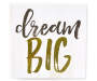 Dream Big Box Plaque silo front