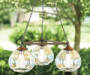 Edison Bulb Trio Battery Operated Chandelier with Remote environment