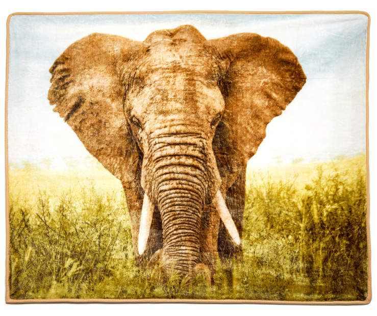 Elephant Throw silo front