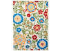 Goldfield Floral Multi Color Indoor Outdoor Area Rug 6 feet by 9 feet Silo Image Overhead View