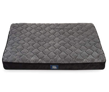 Everyday Savings On Pet Carriers Cat Amp Dog Beds Big Lots