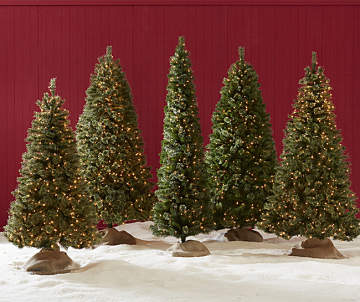 flocked christmas tree collection starting at 7225 green pre lit