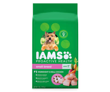 Shop for Dog Toys, Cat Toys, Treats, Beds & More | Big Lots