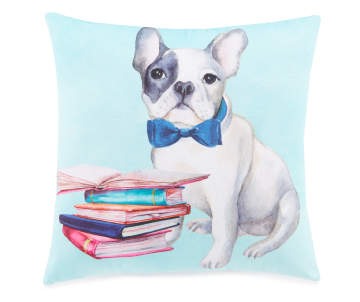 7e16d42cbd62 Home Décor: Throw Pillows, Wall Art & More | Big Lots