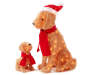 Light Up Fluffy Dogs 2 piece set with big dog wearing a santa hat and puppy wearing a scarf front view silo image