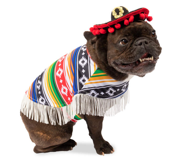 MULTI-COLORED SOMBRERO PONCHO -XS
