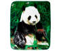 Panda Bear Throw Blanket Overhead View Silo Image