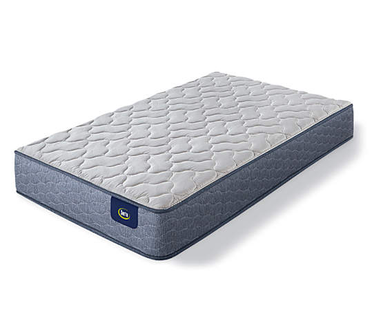 Serta Aldbury Firm Twin Mattress Big Lots